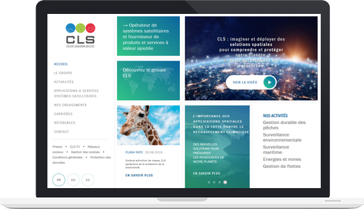Exemple de site WordPress : CLS